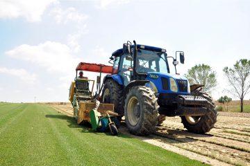 Tractor Oils